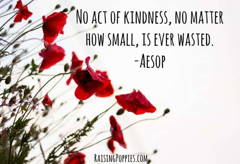 Make a Difference Join #KindPoppyProject Raising Poppies parenting gifted twice-exceptional children, KindPoppyProject, #KindPoppyProject