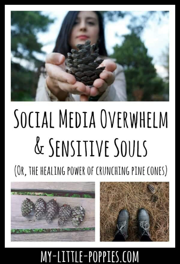 Social Media Overwhelm & Sensitive Souls (Or, the healing power of crunching pine cones)