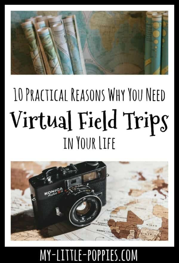 10 Practical Reasons Why You Need Virtual Field Trips in Your Life | My Little Poppies, fieldtripzoom