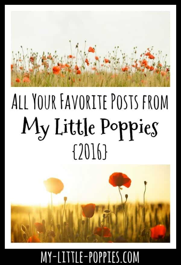 All Your Favorite Posts | My Little Poppies 2016