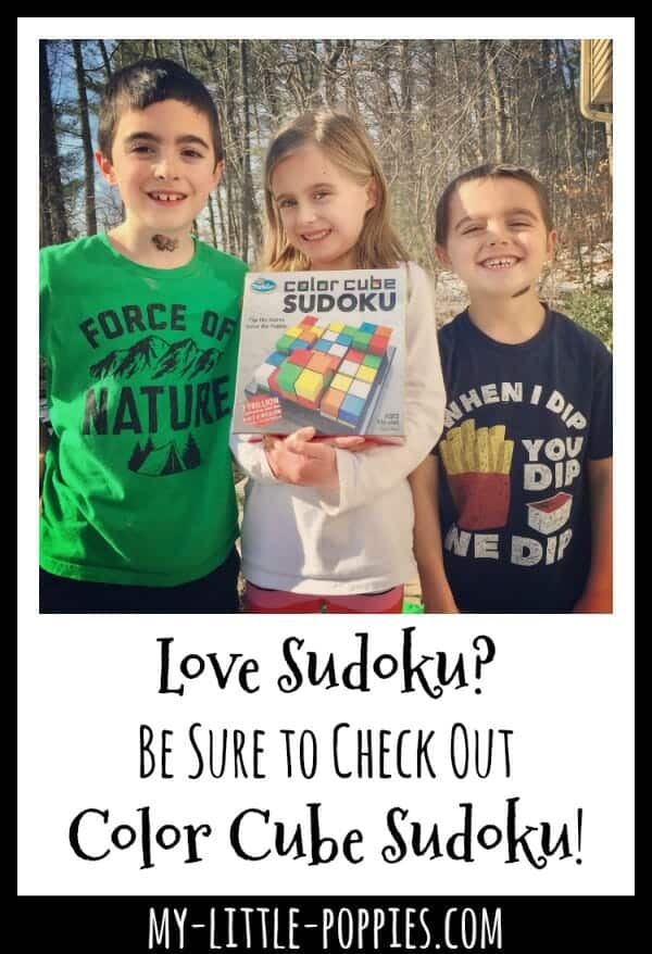 Love Sudoku? Check Out Color Cube Sudoku by ThinkFun! | My Little Poppies
