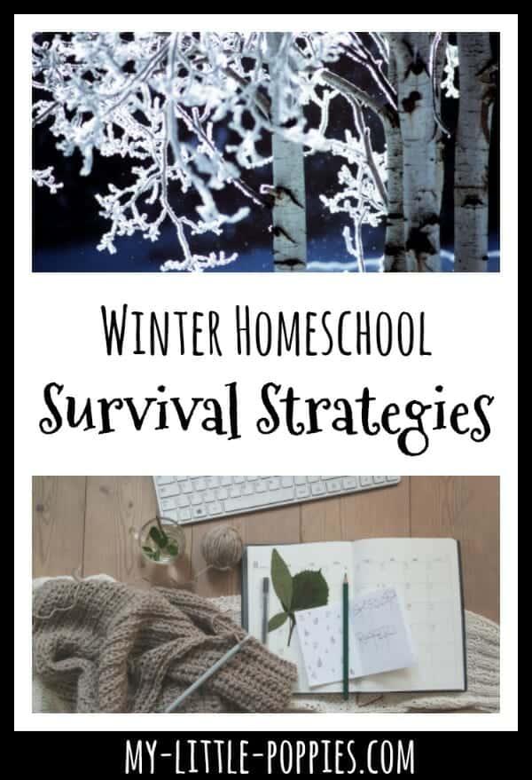 Winter Homeschool Survival Strategies | My Little Poppies