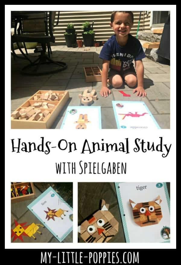 Hands-On Animal Study with Spielgaben | My Little Poppies