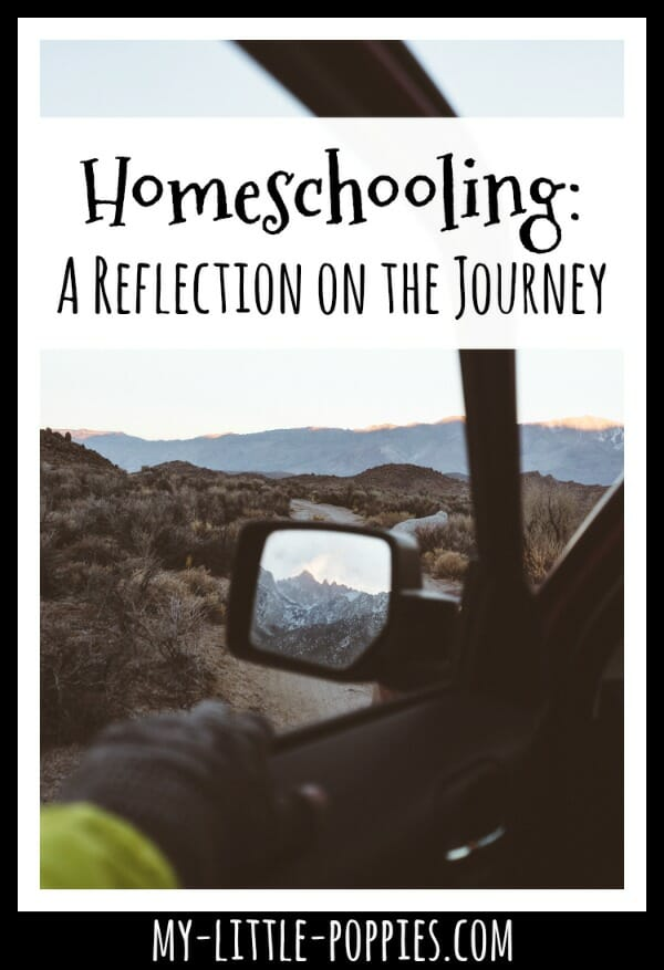 Homeschooling: A Reflection on the Journey | My Little Poppies