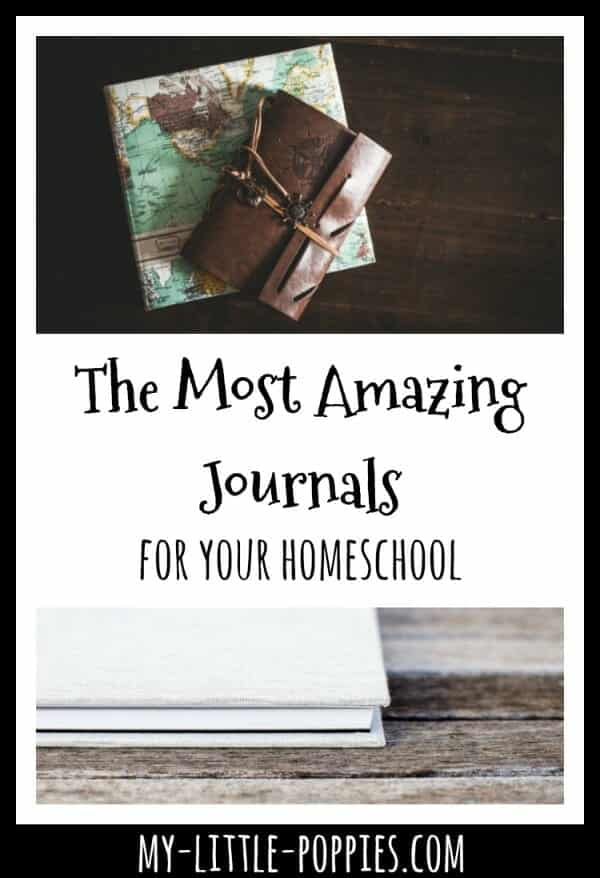 The Most Amazing Journals to Use with Your Children | My Little Poppies