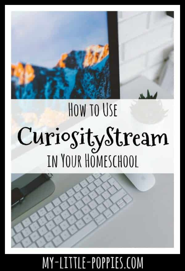 How to Use Educational Video Streaming in Your Homeschool