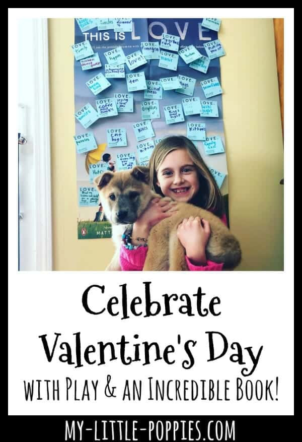 Celebrate Valentine's Day with Play and an Incredible Book to Read Aloud! | My Little Poppies