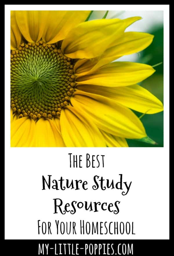 The Best Nature Study Resources For Your Homeschool | My Little Poppies