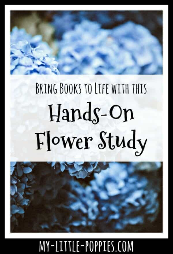 Bring Books to Life with this Hands-On Flower Study | My Little Poppies