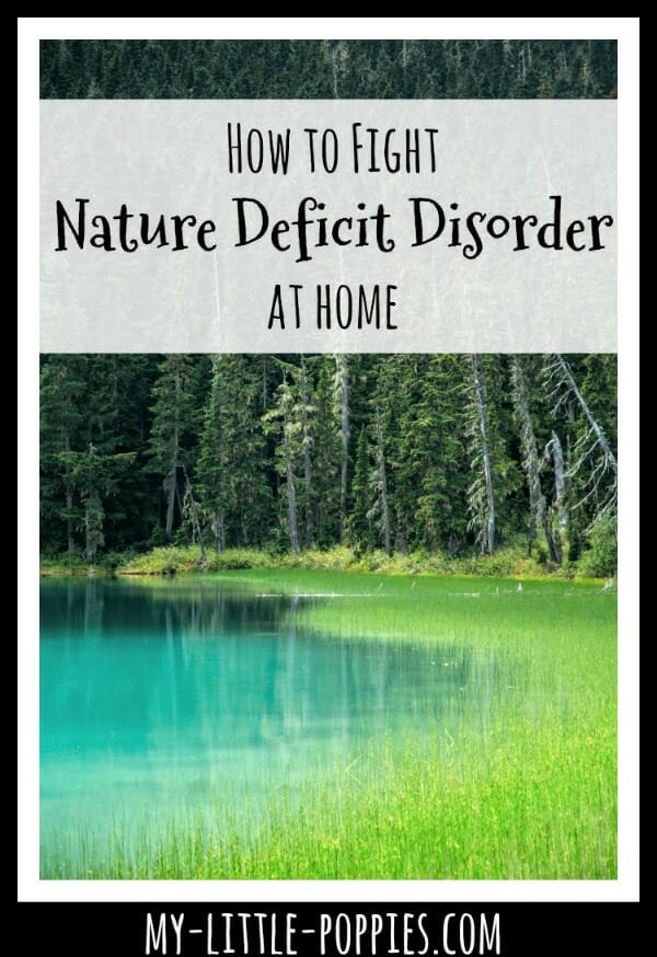 How to Fight Nature Deficit Disorder at Home this Fall and Winter | My Little Poppies
