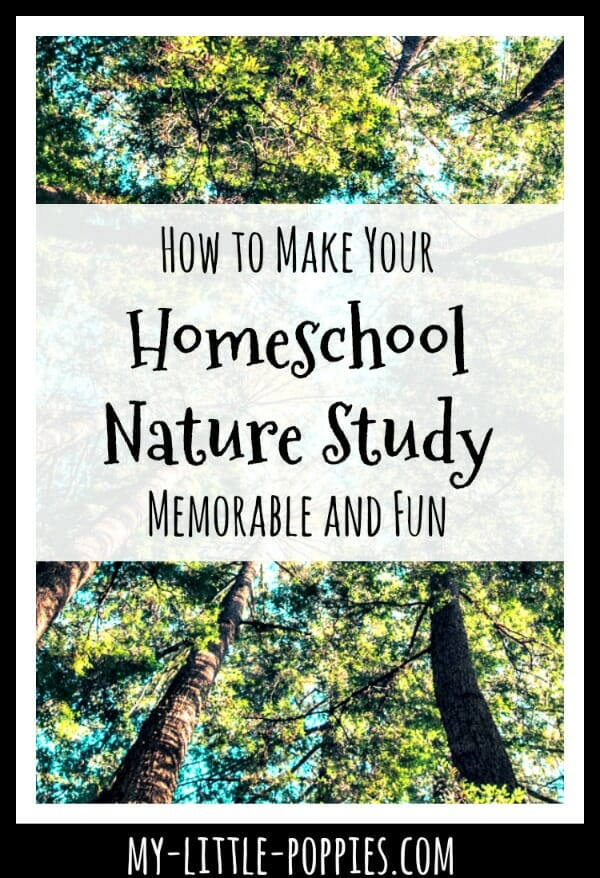 How to Make Your Homeschool Nature Study Memorable and Fun | My Little Poppies