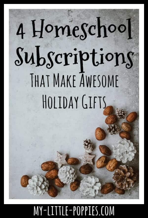 Homeschool Subscriptions That Make the Most Awesome Holiday Gifts | My Little Poppies