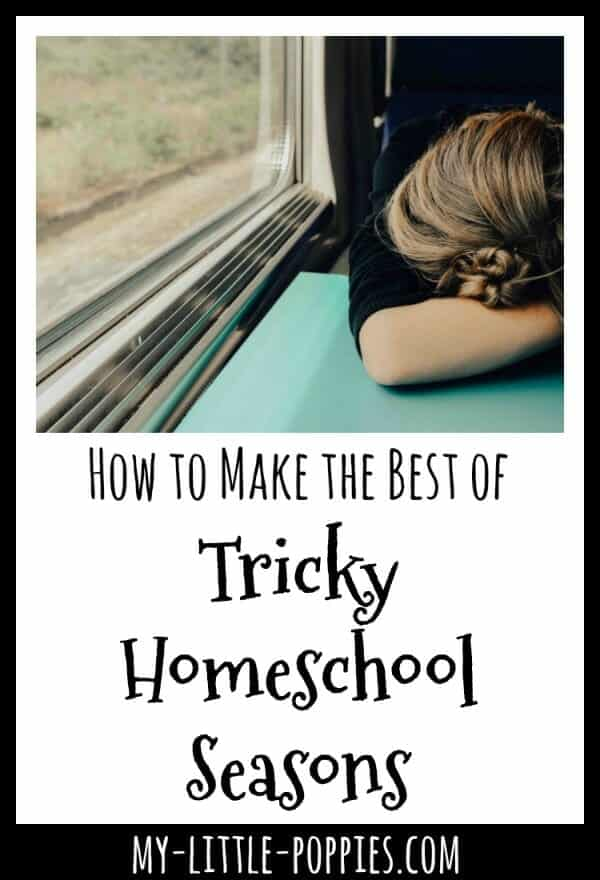 How to Make the Best of Tricky Homeschool Seasons | My Little Poppies