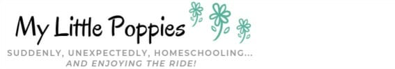 My Little Poppies: Suddenly, unexpectedly, homeschooling... and enjoying the ride!