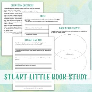 Stuart Little by E.B. White Study {Lazy Unit Study Inspiration Pack} | My Little Poppies