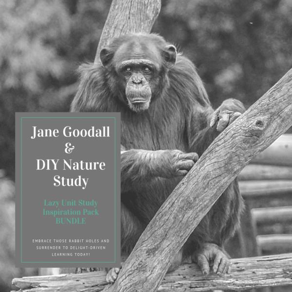 Jane Goodall Study & DIY Nature Study {Lazy Unit Study Inspiration Pack BUNDLE} My Little Poppies