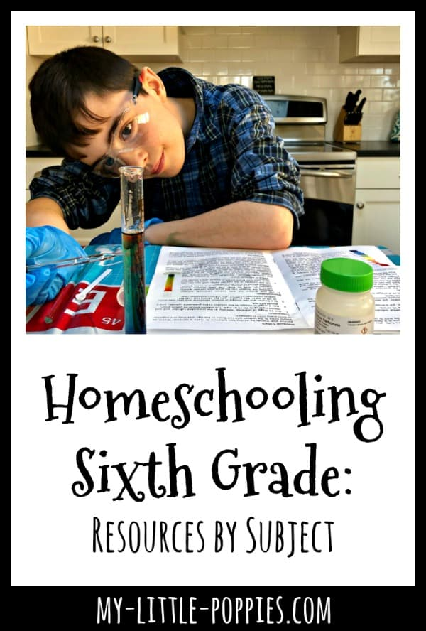 Homeschooling Sixth Grade: Resources by Subject | My Little Poppies