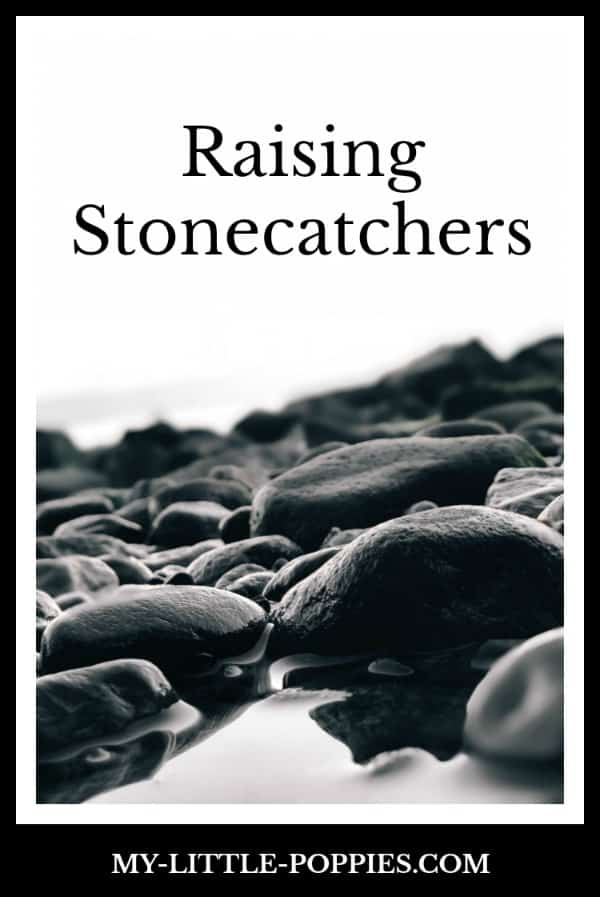 On Raising Stoncatchers | My Little Poppies