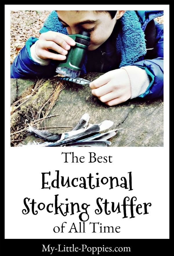 The Best Educational Stocking Stuffer of All Time | My Little Poppies