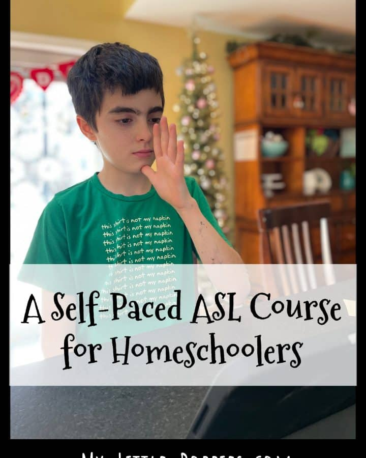 Does your child want to learn ASL? Check THIS out! A Self-Paced Online ASL Course for Homeschoolers | My Little Poppies